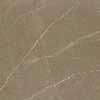Плитка FASTINATION MARRONE POLISHED RECT 750x750